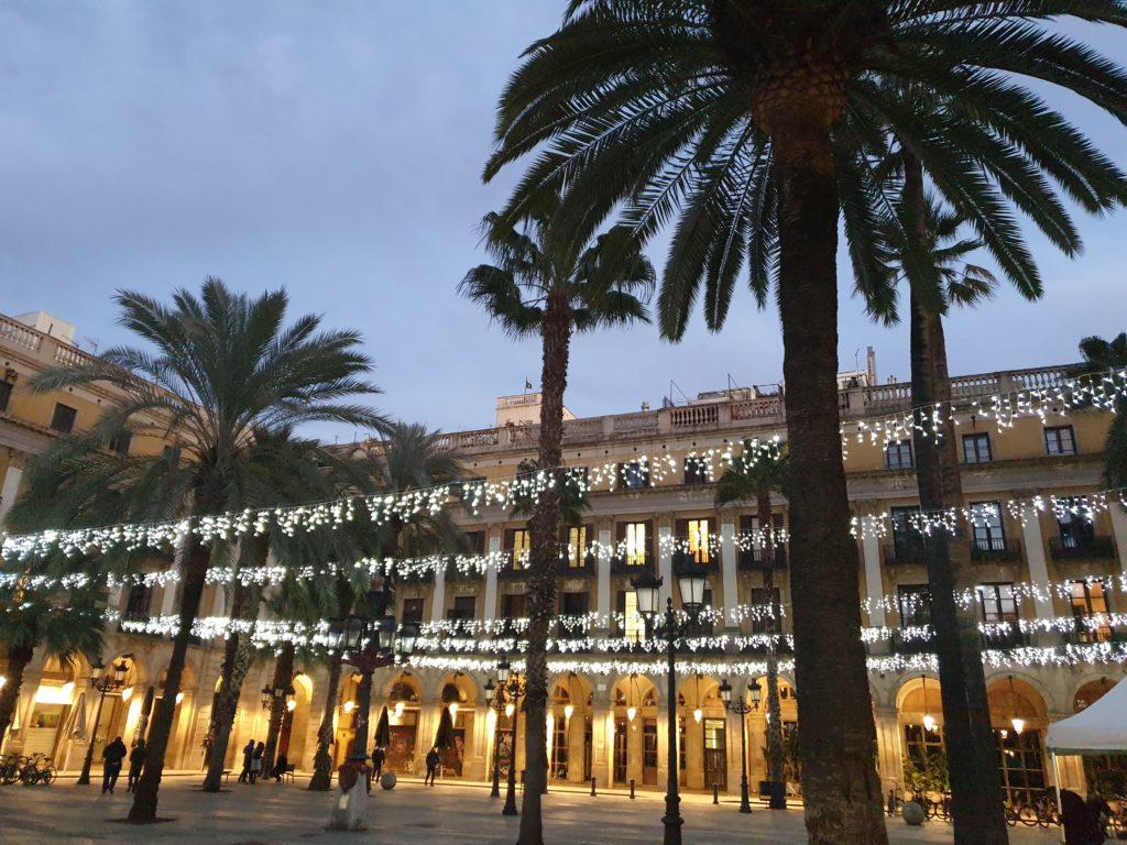 plaça Reial palmiers