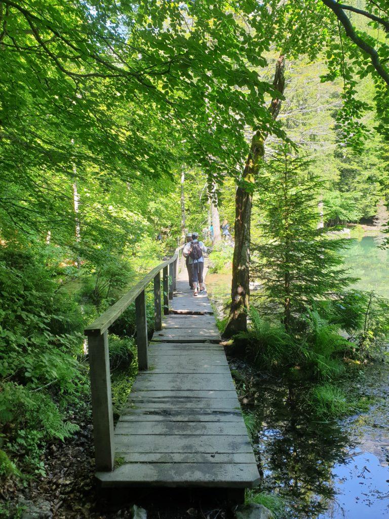autour lac vert pont