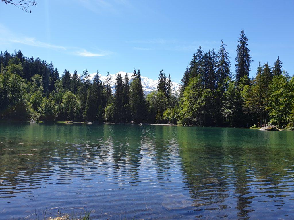 lac vert vue mont blanc
